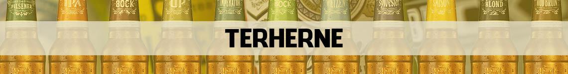 bier bestellen en bezorgen Terherne